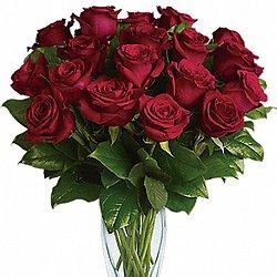 Twelve Long Stemmed Red Roses