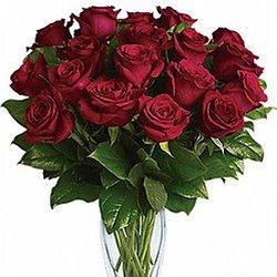 Twelve Long Stemmed Roses